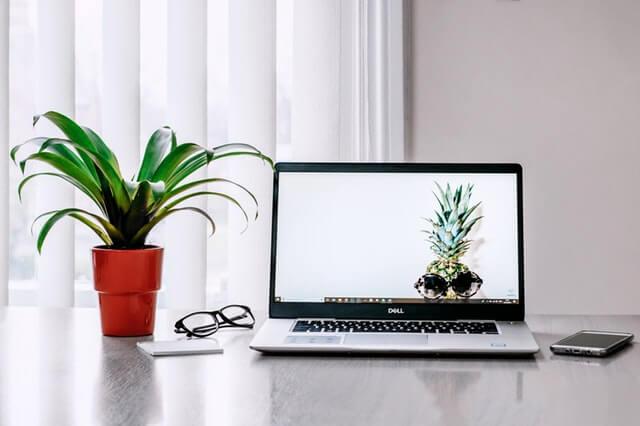 kasvi-laptop
